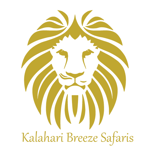 Logo Design Kalahari Breeze Safaris
